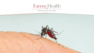 Dengue fever infection risk